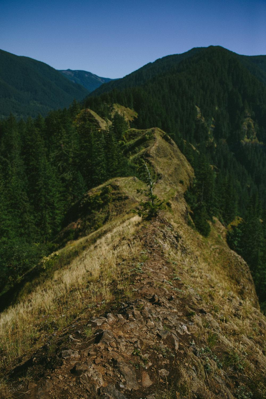 Columbia River Gorge - NICOLEXKNOX