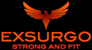 181005_exSF_logo.png