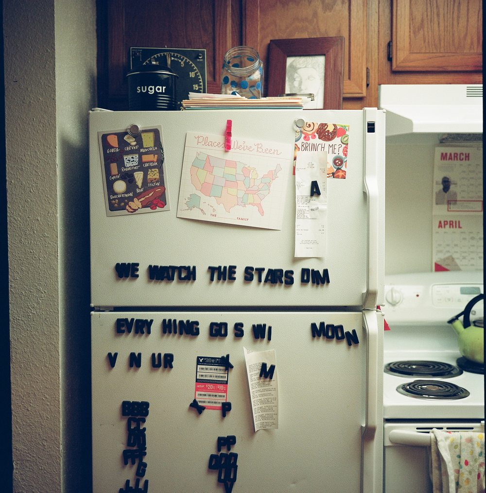 brileynoel_fridge2