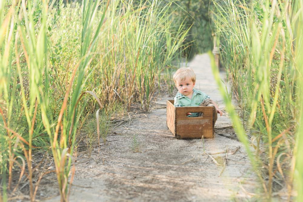 Charleston-Baby-Photographer-Following-Seas-Photography-2411 copy.jpg