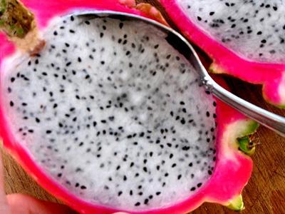 dragronfruitstep4.JPG