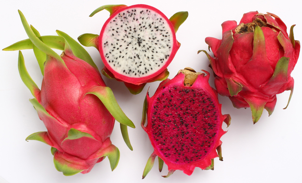 dragon fruit header