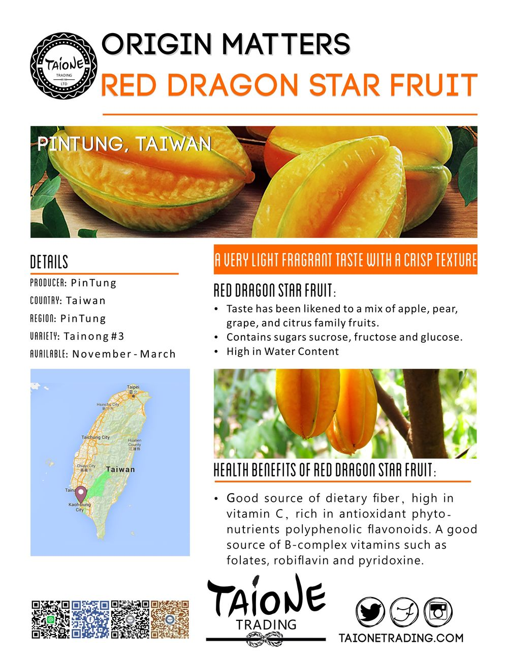 star fruit eng.jpg