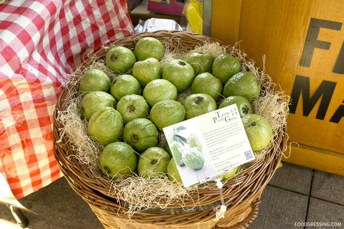 Guava-Taione-trading.jpg