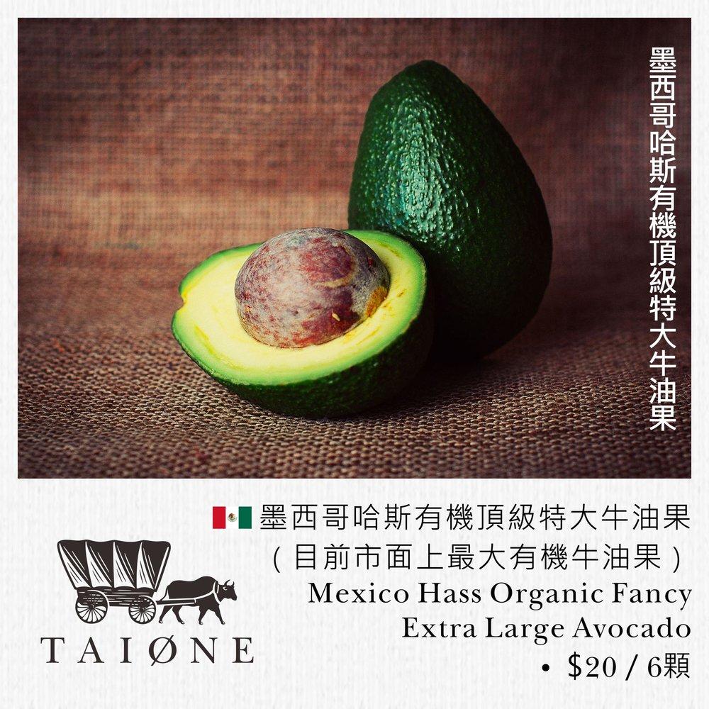 22. avocado L.jpg