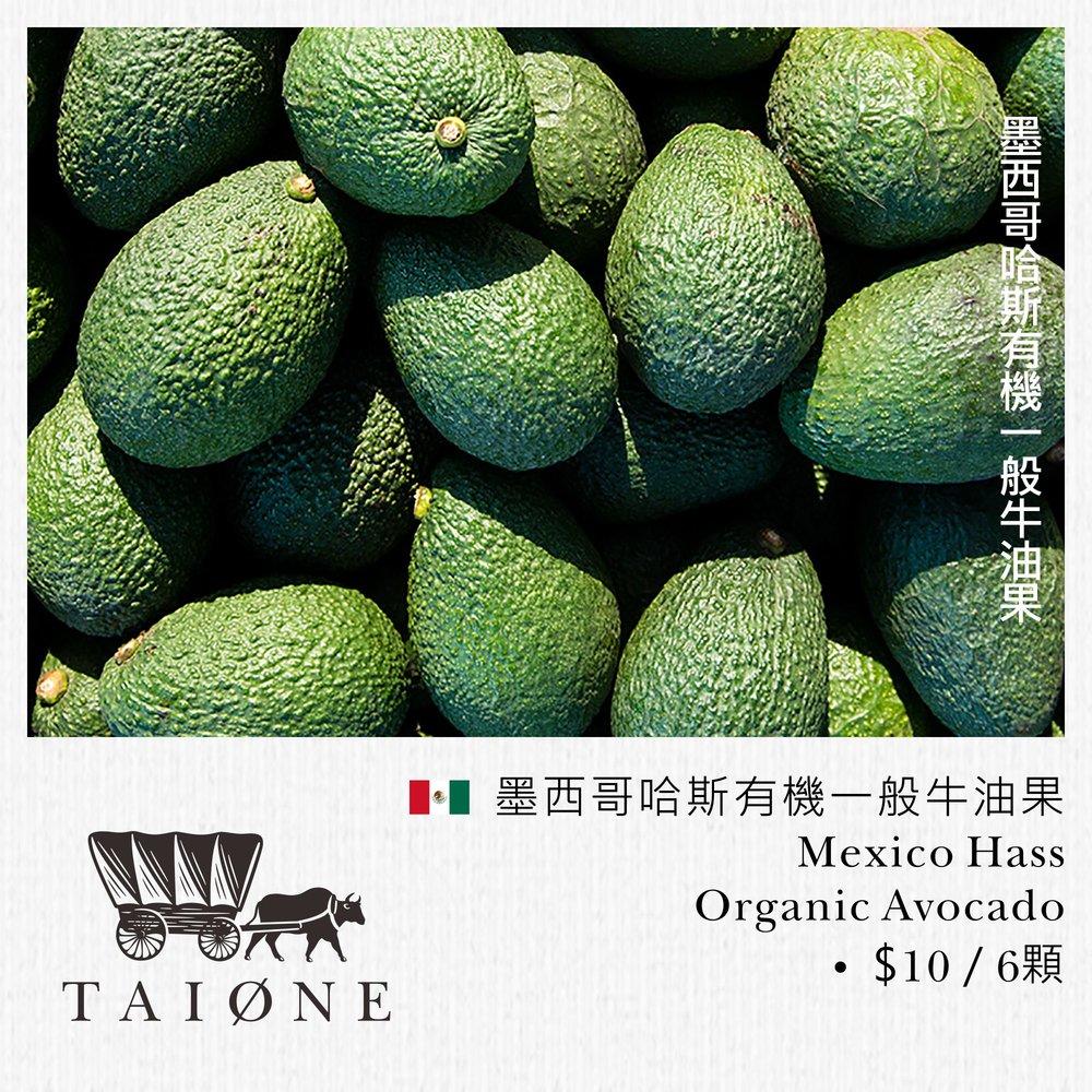 23. avocado M.jpg