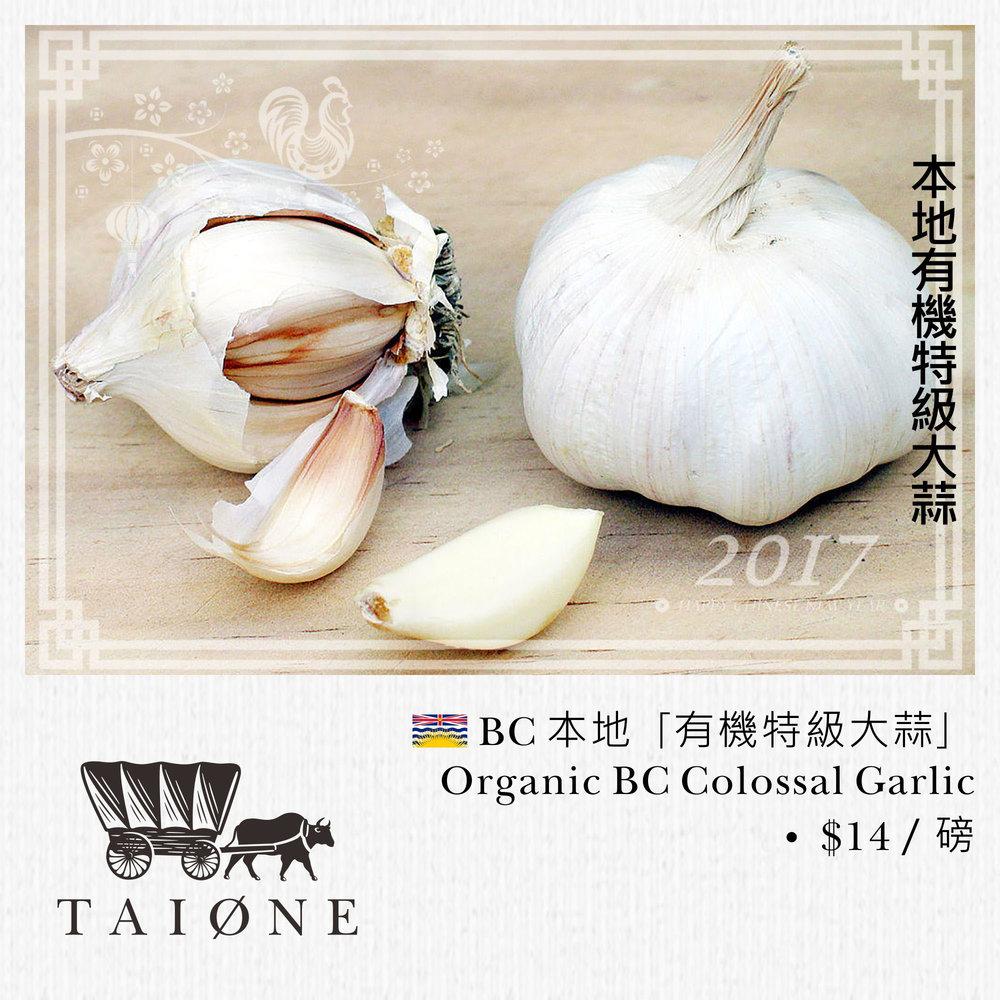 25. garlic.jpg