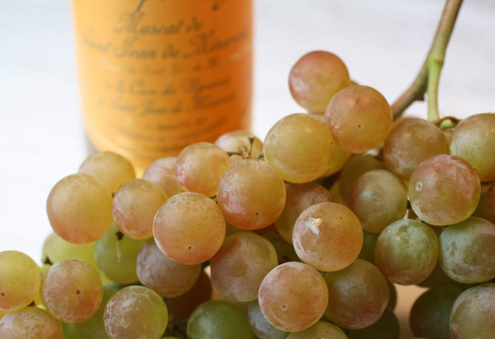 Muscat-Grapes.jpg