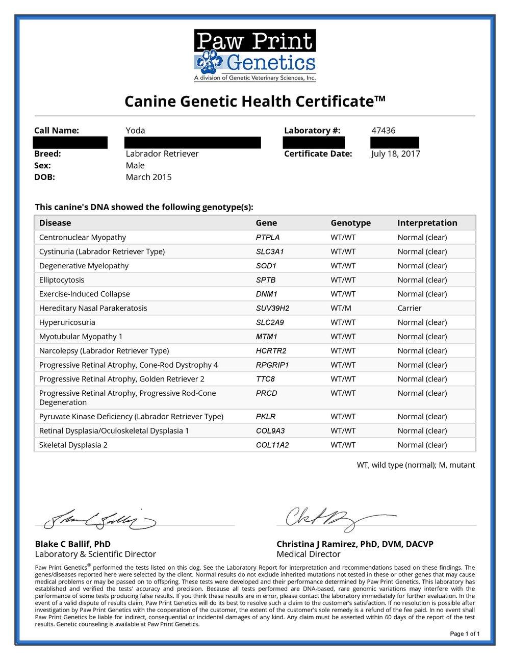Yoda_Health_Cert-page-001.jpg