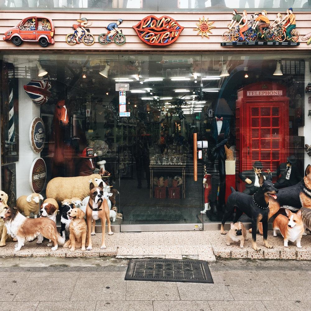 19-dogs.jpg