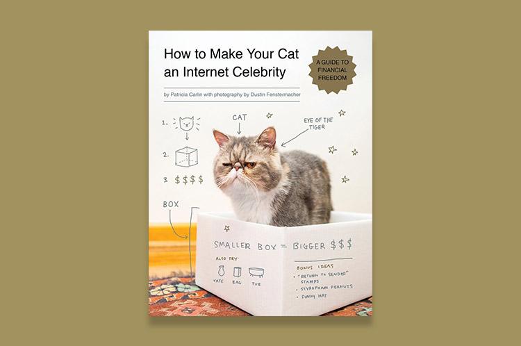 internet-celebrity.jpg
