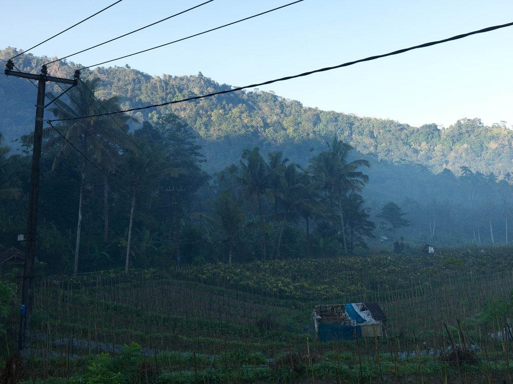 2016 09 04 - Bali_0004.jpg