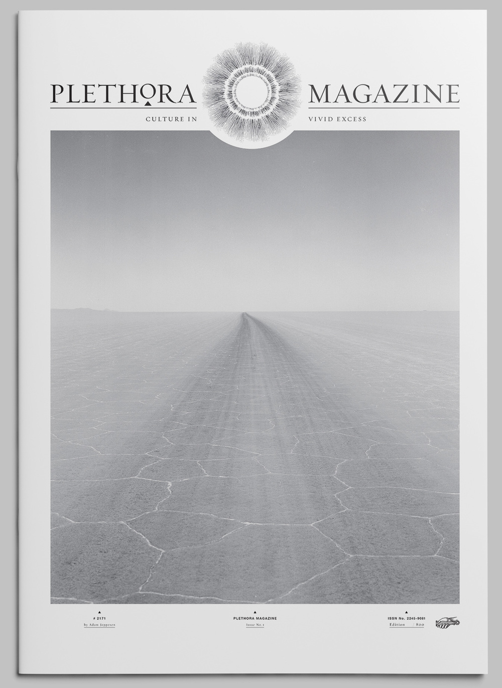 plethora_magazine_issue_1