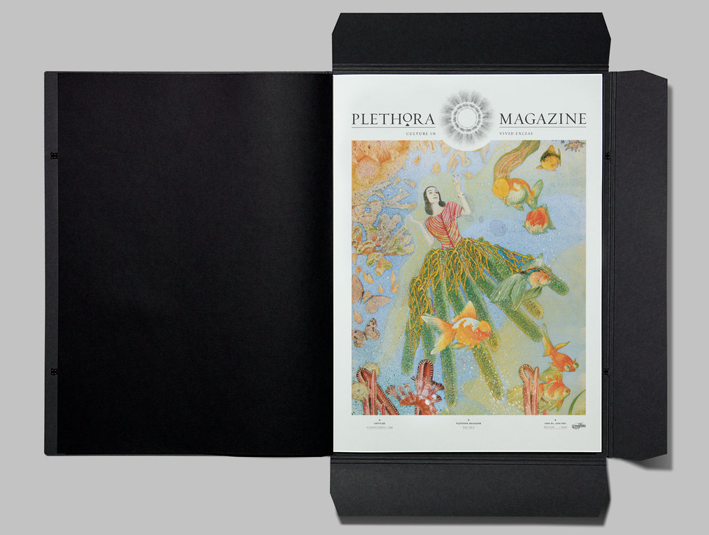 Plethora_Magazine_Issue_Cover-kopier.jpg