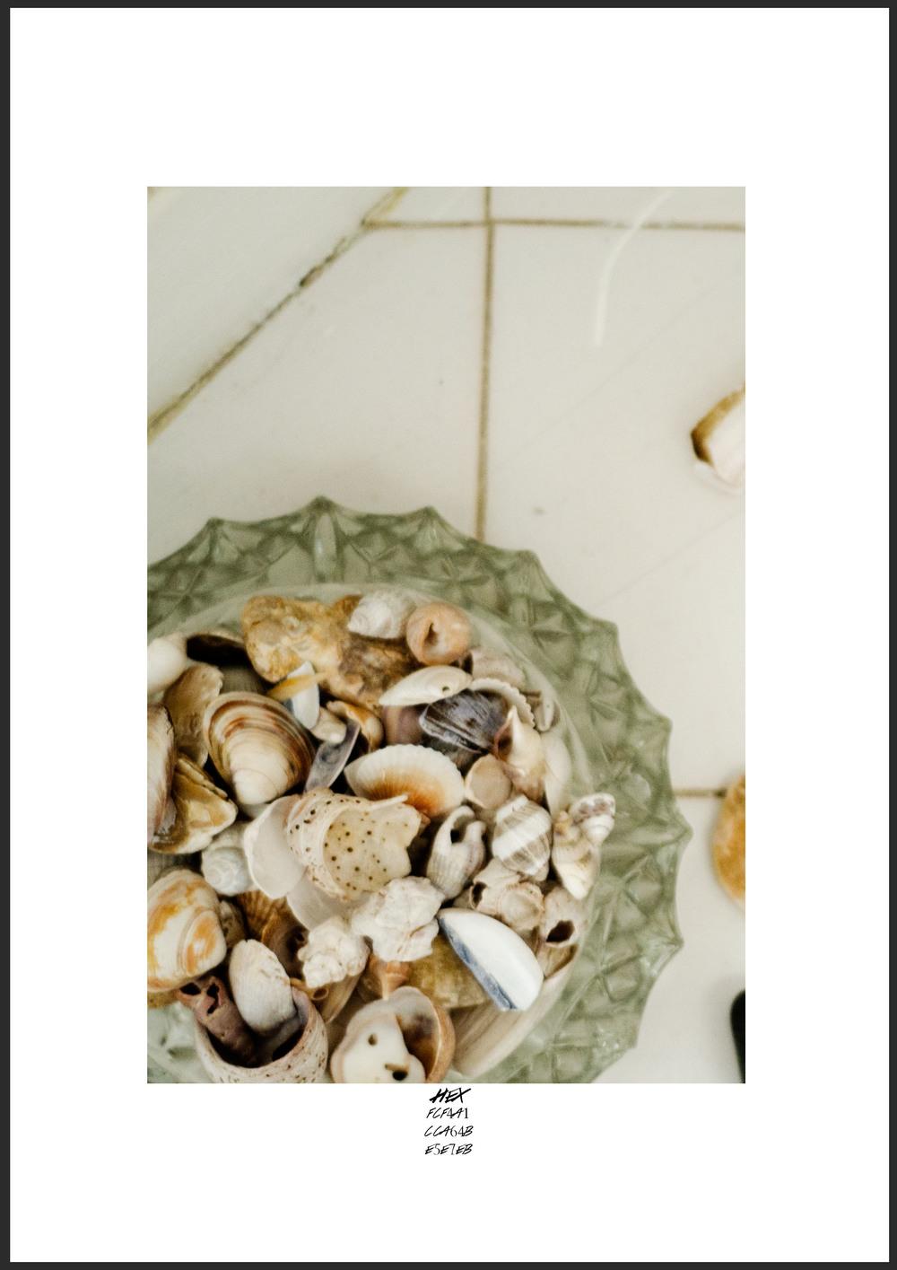 Hex Shells.jpg