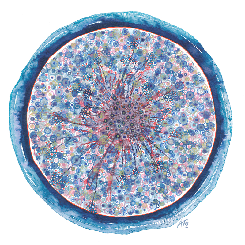 Blue plate , colored drawing ink and gelly rolls on 35x35cm paper.