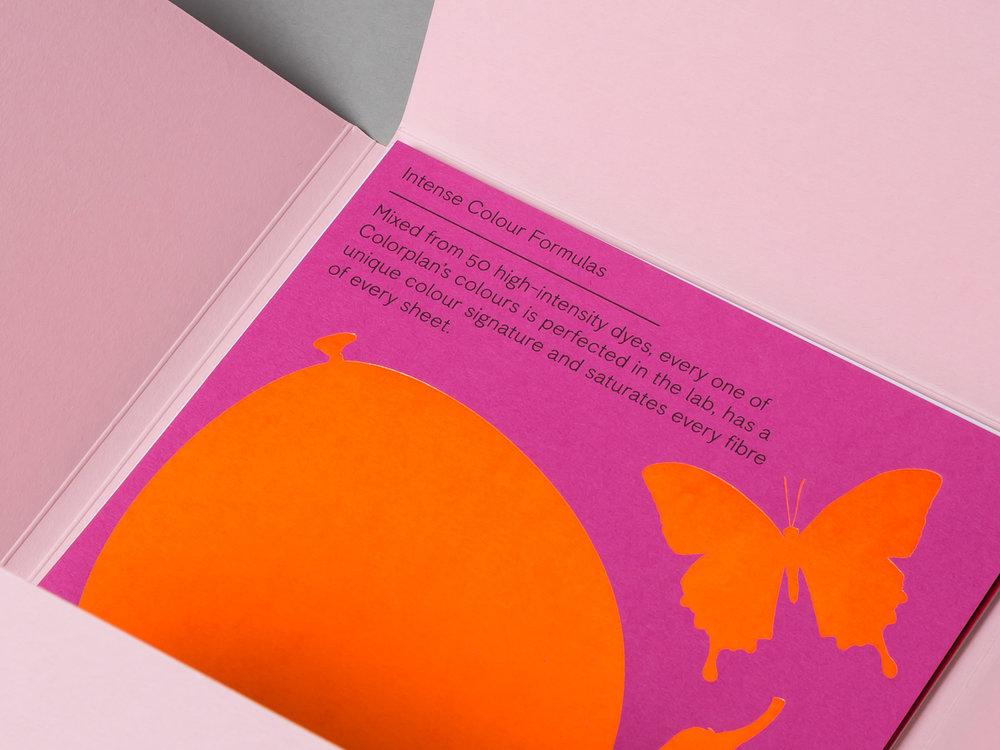 GF Smith - Colorplan - Studio - LR-8.jpg
