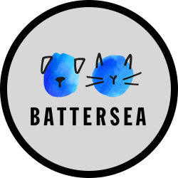 battersea.png