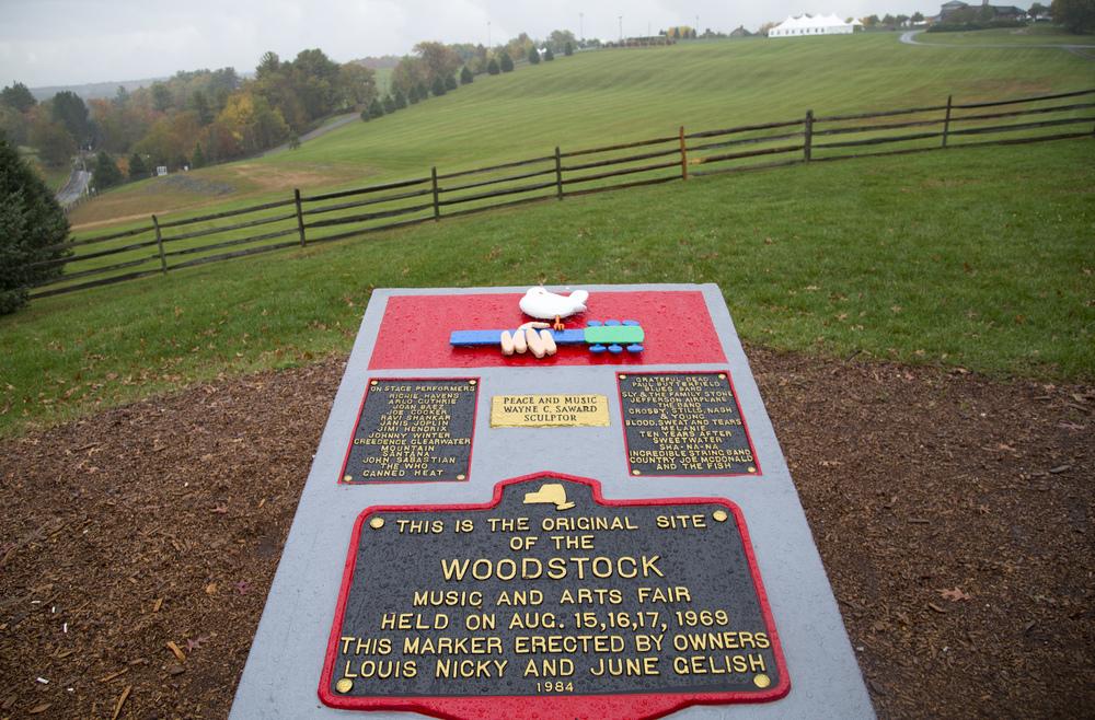 Stevie Soul Woodstock.jpg