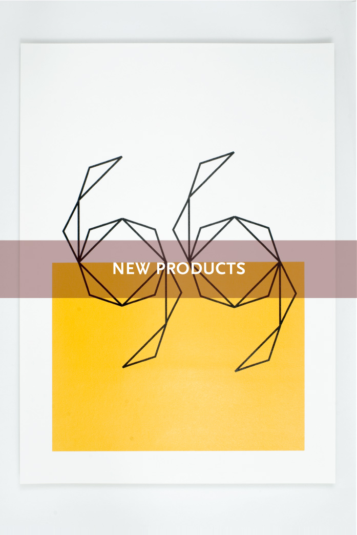 NEW-PRODUCTS-02.jpg