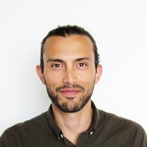 Paolo Marinelli, Technologist