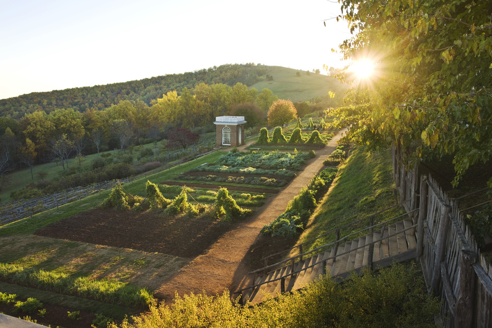 Thomas Jefferson's garden at Monticello. ©Thomas Jefferson Foundation at Monticello, photography by Robert Llewellyn