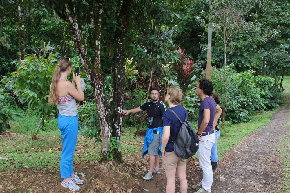 Jose Pablo teaching the group about how cinnamon is produced