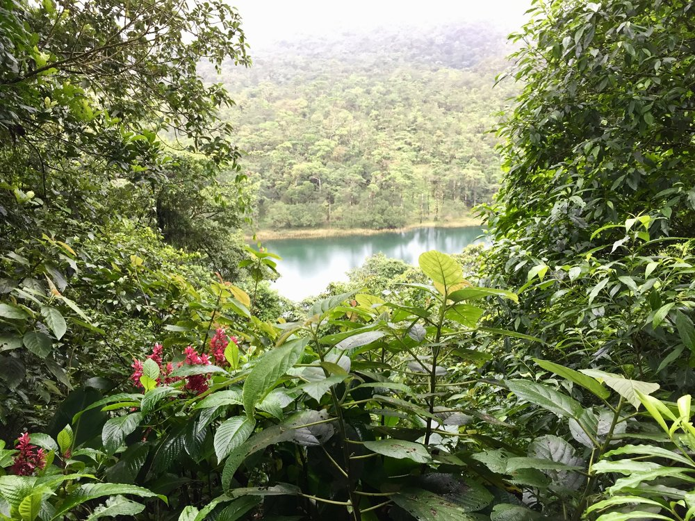 View from the rainforest trails near Arenal volcano