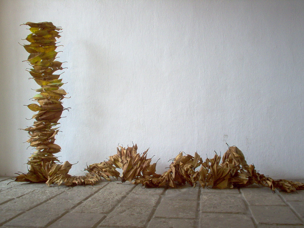 Time Piece: Rubber tree leaves. Yvonee Mouser, 2005 CCA