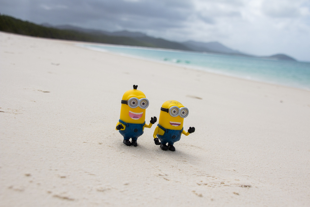 Minions exited on Whitehaven beach