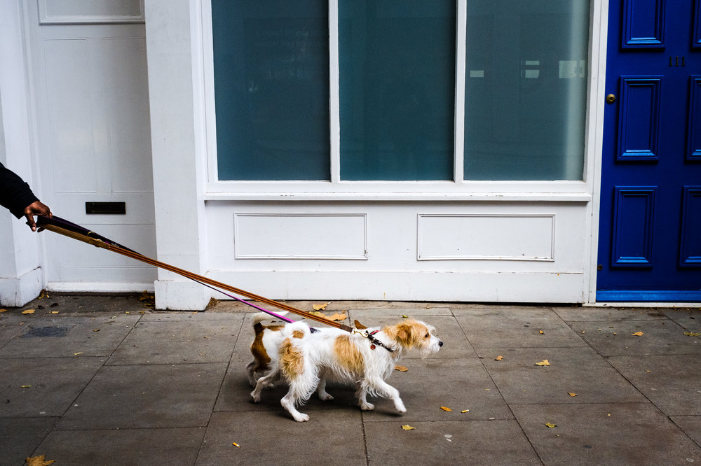Going for walk, London