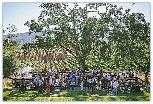 B.R. Cohn Winery - Glen Ellen, CA
