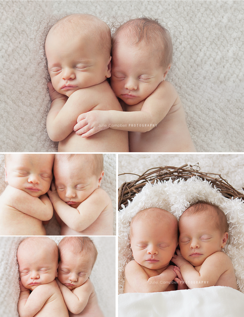 Newborn Photographer Thousand Oaks