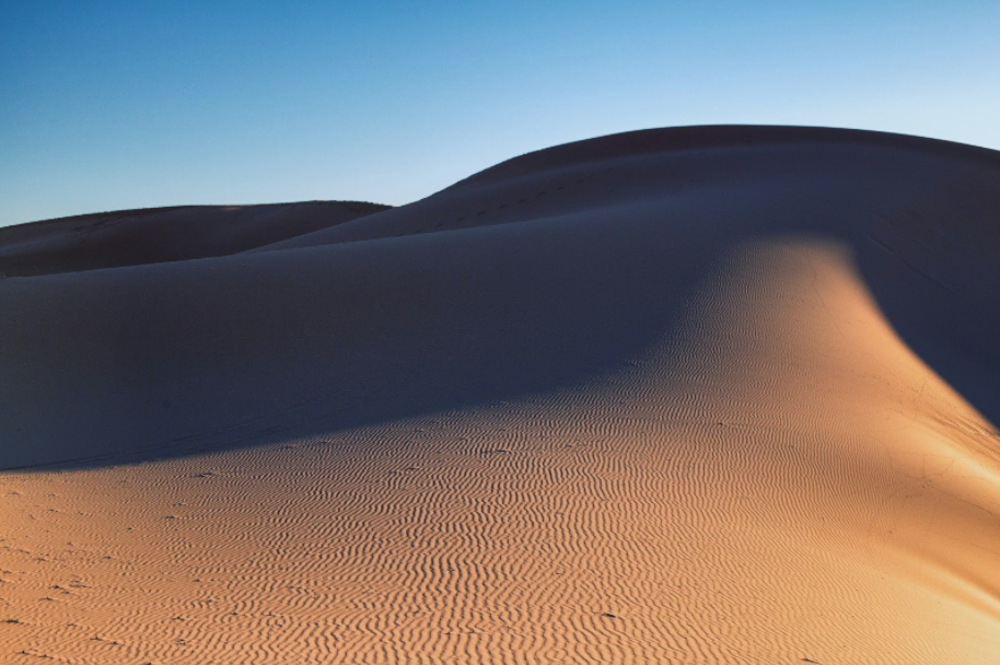 Some of the Merzouga desert dunes are sharp like cut glass, but the ripples of light and darkness on these turn sand into the swirling, textured skin of a living creature.