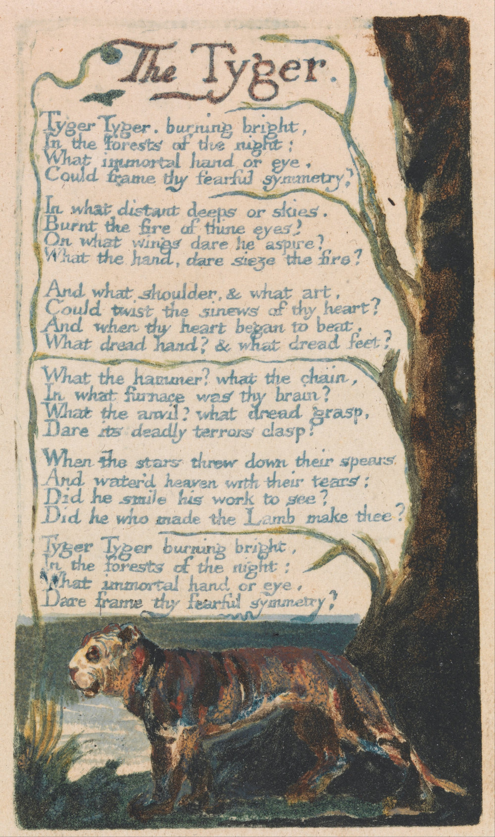 "Songs of Innocence and of Experience, Plate 42, ""The Tyger"" (Bentley 42) ,  William Blake"