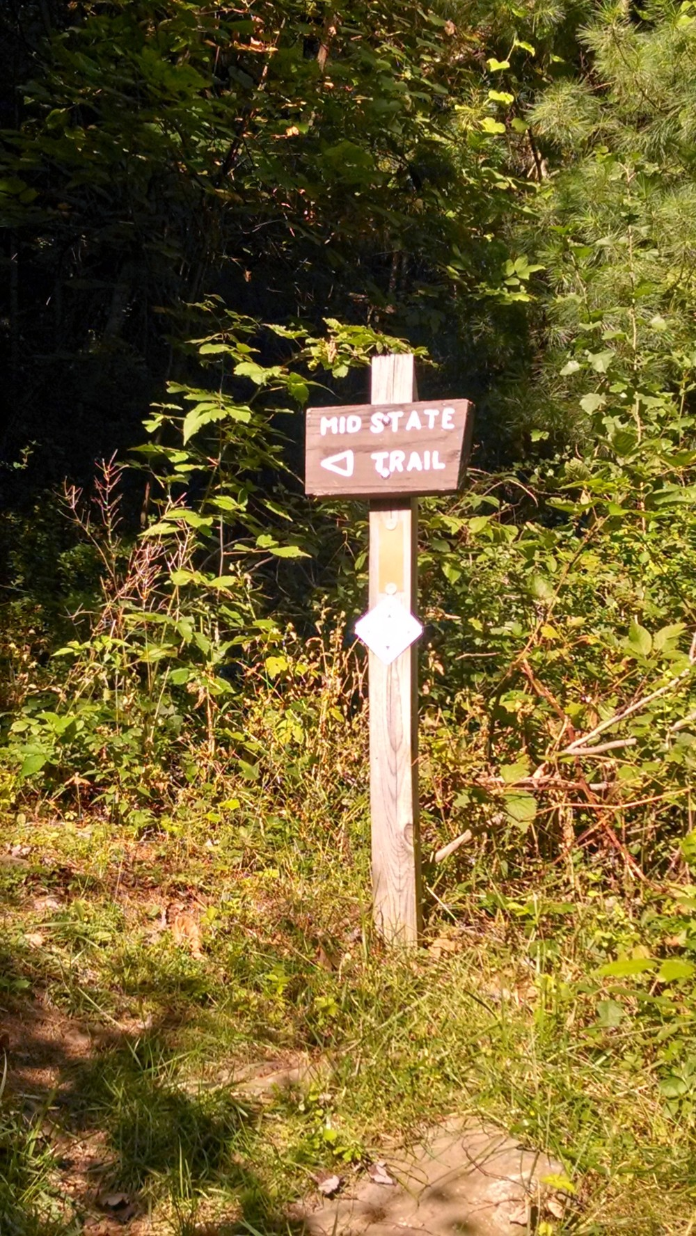 We have access to the  Mid State Trail  and various offshoot trails near the entrance of Ramsey Village.