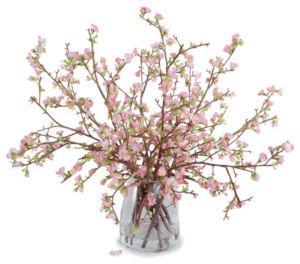 flowering branches.jpg