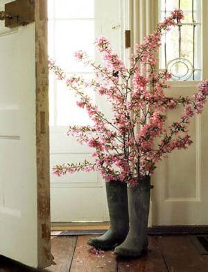 spring branches.jpg