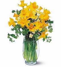 daffodilDesign.jpg