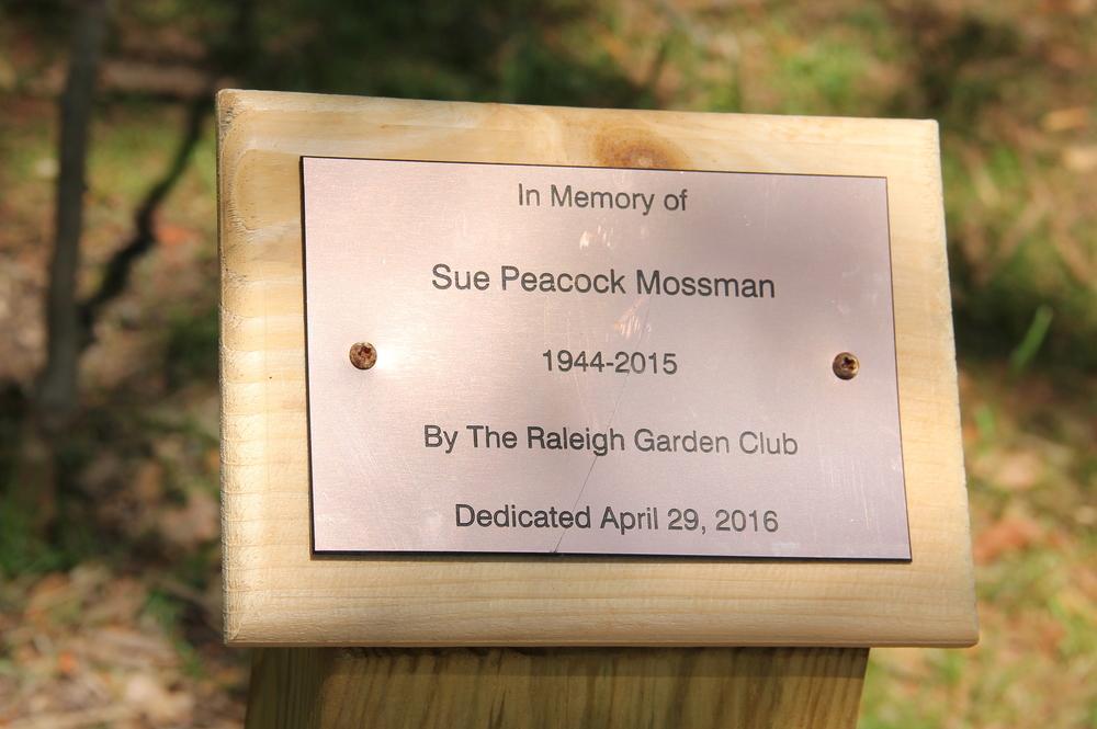 Sue Peacock Mossman.jpg