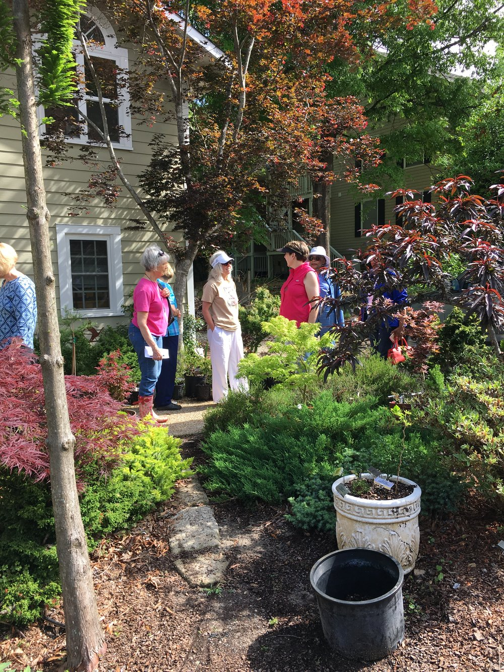 Hort Group Conifer garden tour 2 April 2017.jpg
