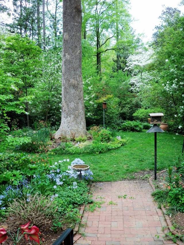 m Reid garden.jpg