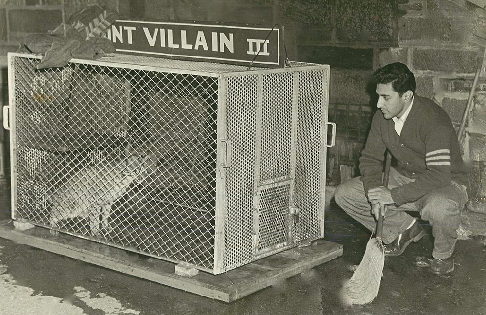 Mr. Blatty with the Villanova WIldCat He Stole while dressed as a Priest