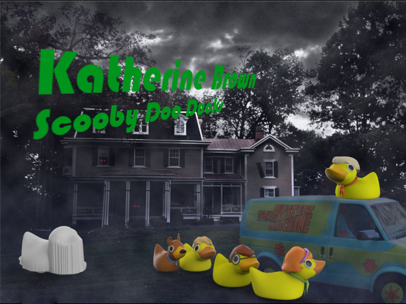 2014_Fall_mtjw245-01_Katherine_Brown_Assignment2_DuckyRendering3 .jpg
