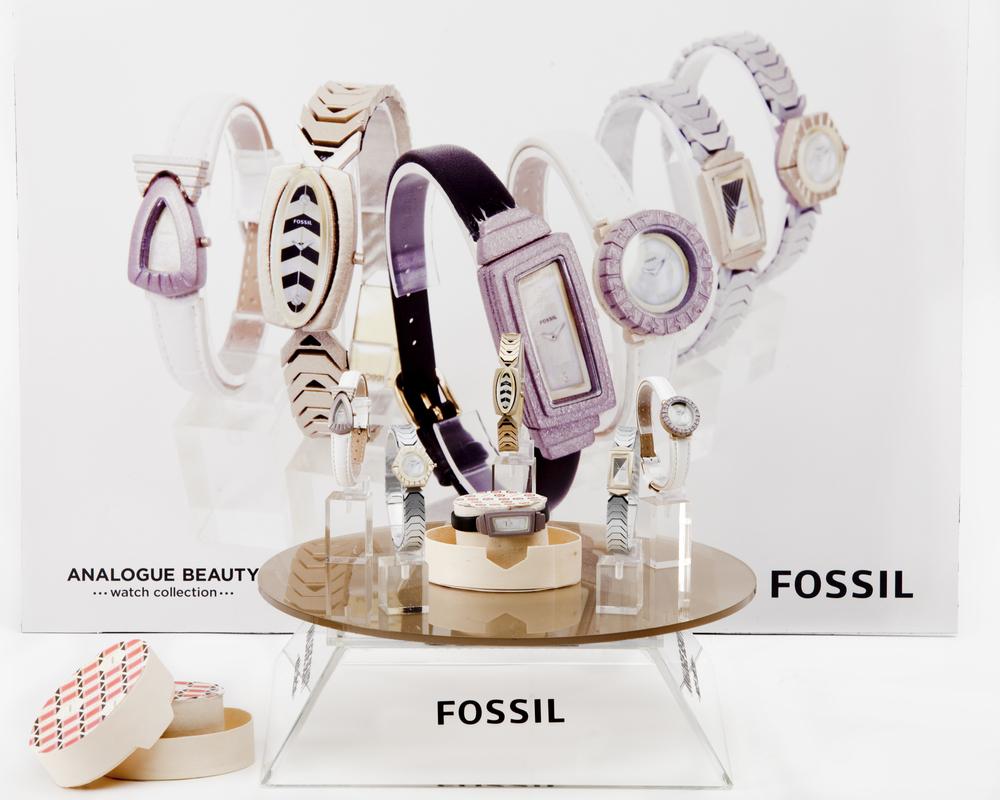 FossilProject_20_DB.jpg