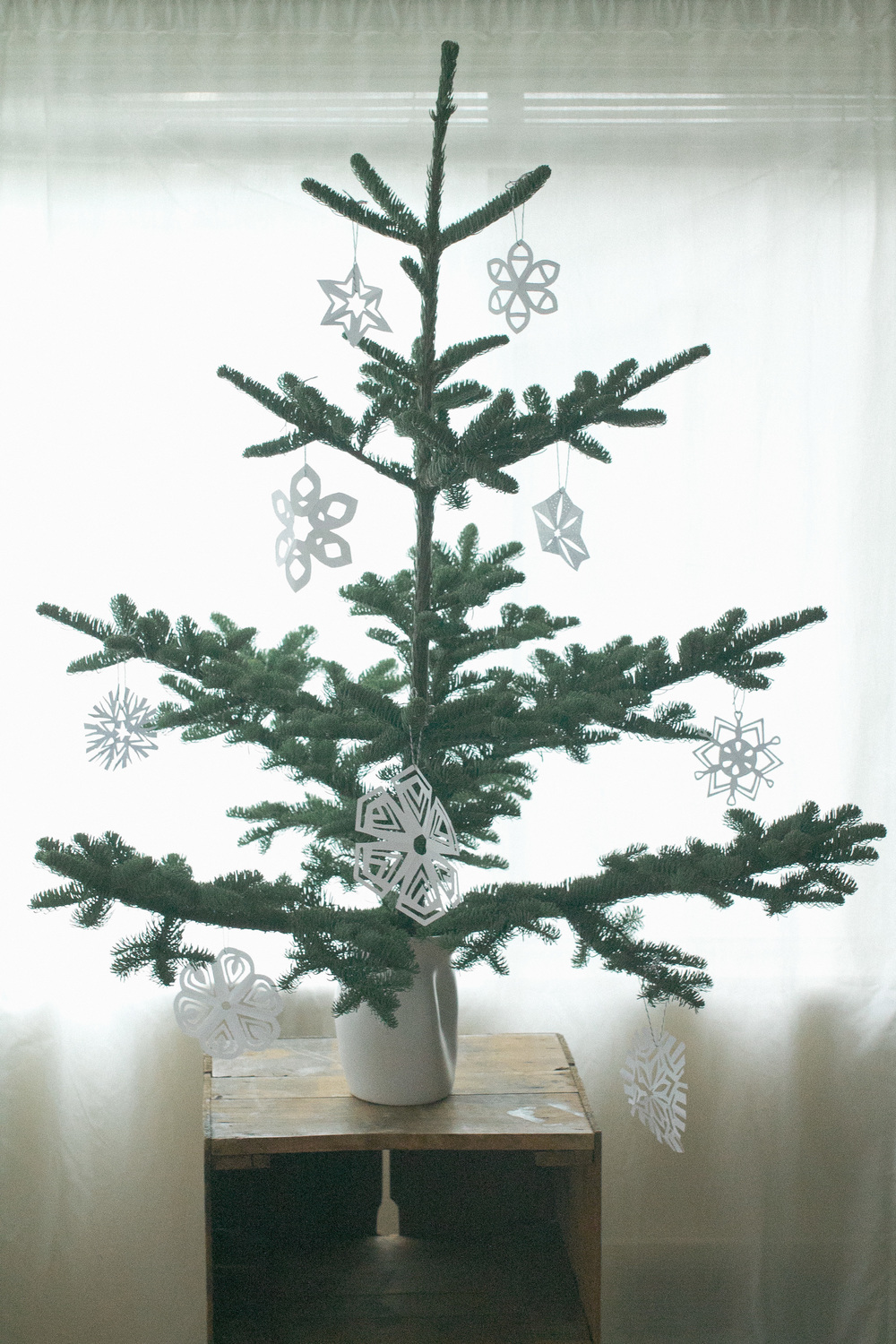 Simple & Sustainable Christmas Tree | Keeper & Co. Blog