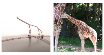 giraffe_final.jpg