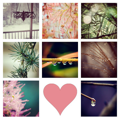 nature_topost.jpg