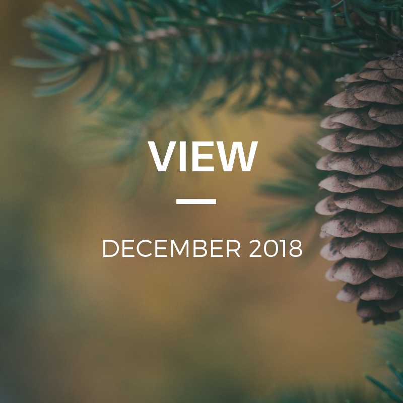TCCN - View December.png