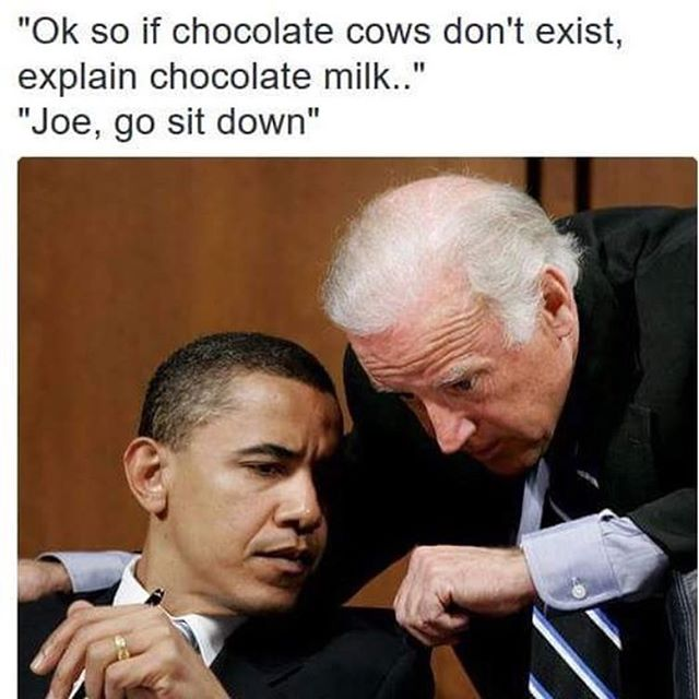 Biden memes were funny for about 12 hours before they quickly became... well this.